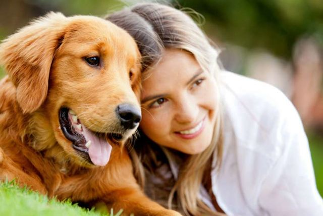 #Dogs - General History Of Dogs #pets #FrizeMedia