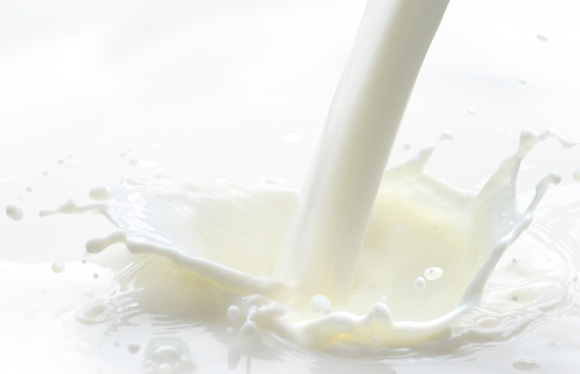Milk is used to such a great extent because it fills many of the requirements of an ideal food.