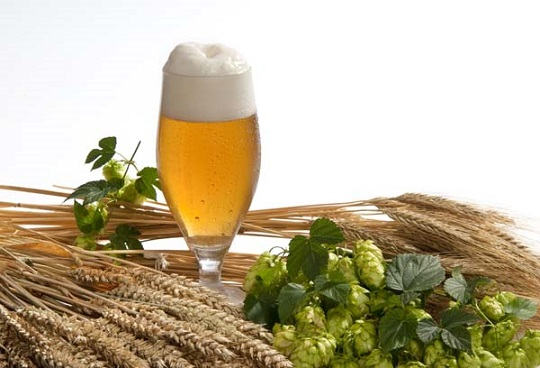 Beer Brewing - Home Brew Beer #FrizeMedia