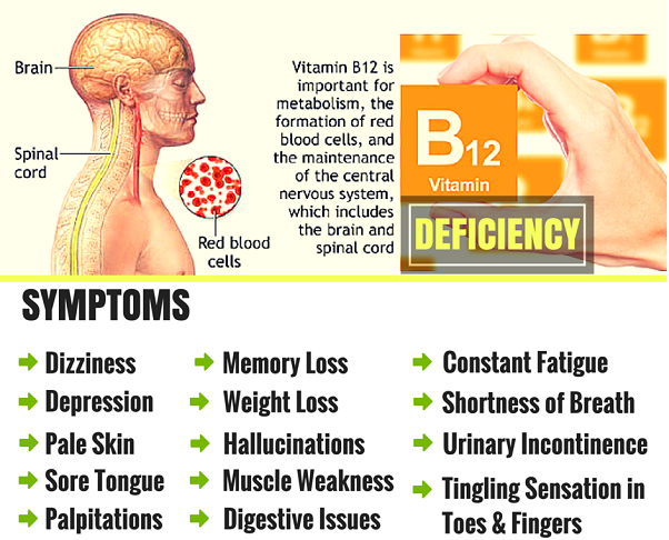 Vitamin B 12 Deficiency - Causes Symptoms Prevention # ... B12 Deficiency