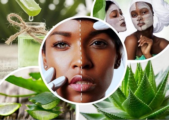 Aloe Vera - A Wonder Herb For Skin #health #FrizeMedia