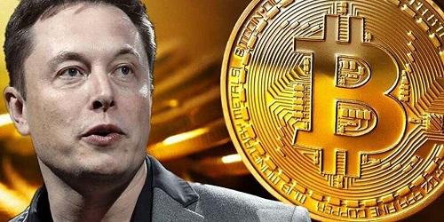 Will Tesla Dump Its Bitcoin Holdings This Quarter? #FrizeMedia