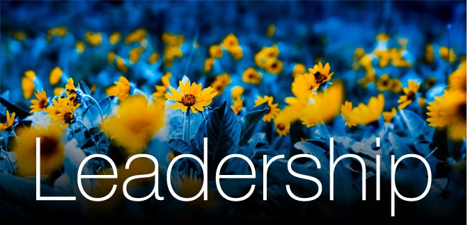 Leadership Qualities - Turning Peoples Bad Attitude Into Top Results #FrizeMedia