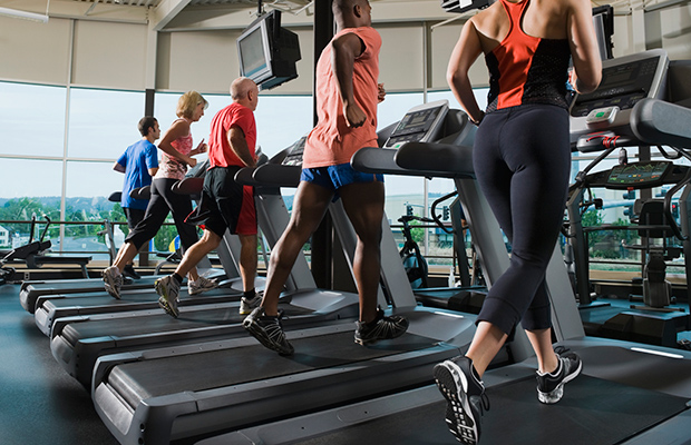 Fitness equipment helps both novice and fitness enthusiasts reach their exercise goals.