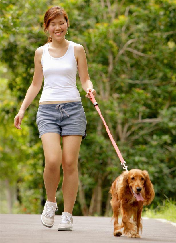 Walking For Fitness - FrizeMedia